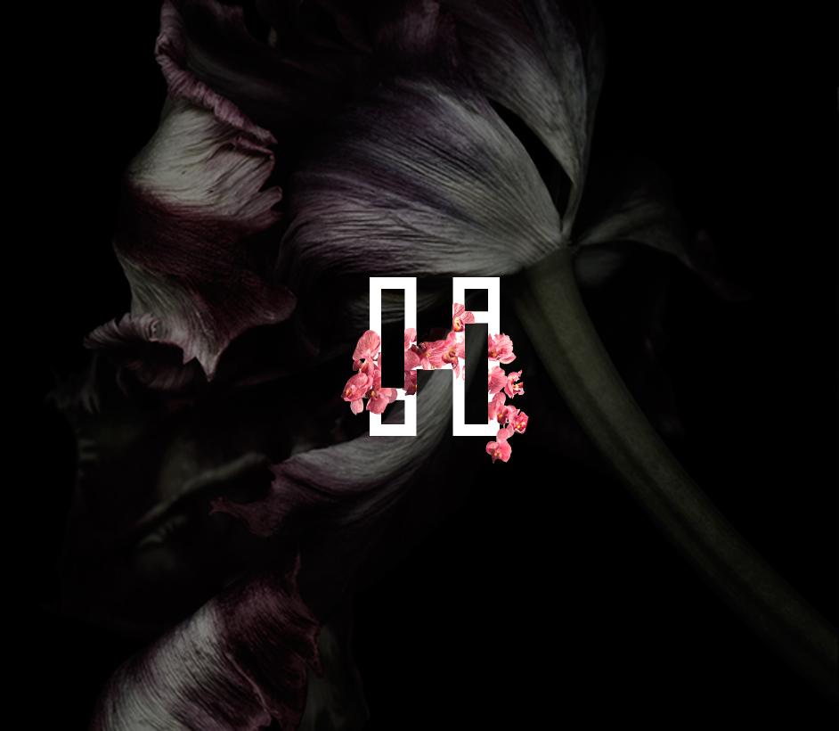 Logo Design - H Luxury Series