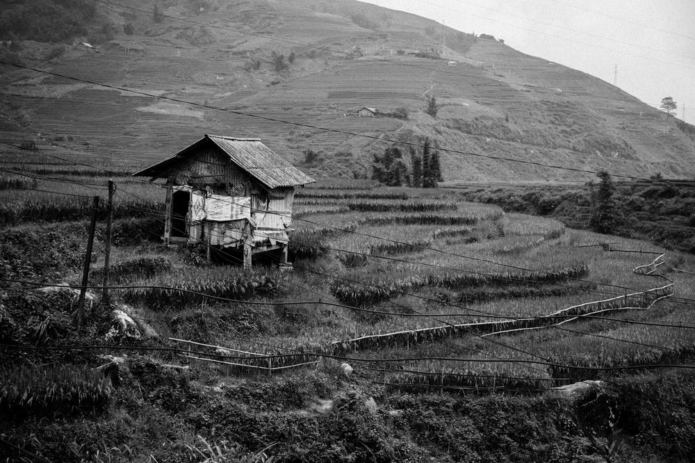 Vietnam0494.jpg