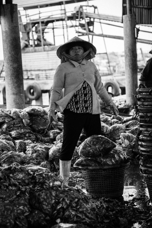Vietnam0249.jpg