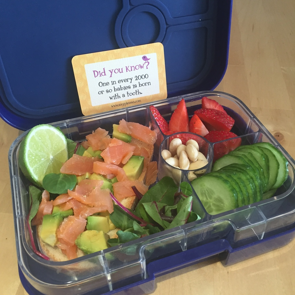 Lunchbox Love with Yumbox lunchbox v2