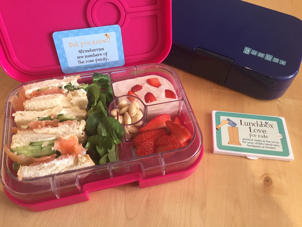Lunchbox Love with Yumbox lunchbox v3