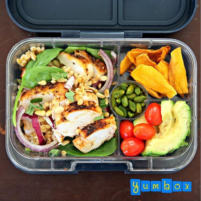 The Yumbox Panino with Weight Watchers Salad