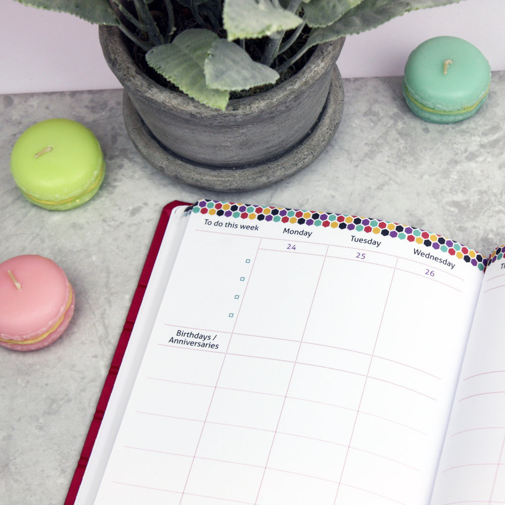 The Master Plan 2017 Family Diary
