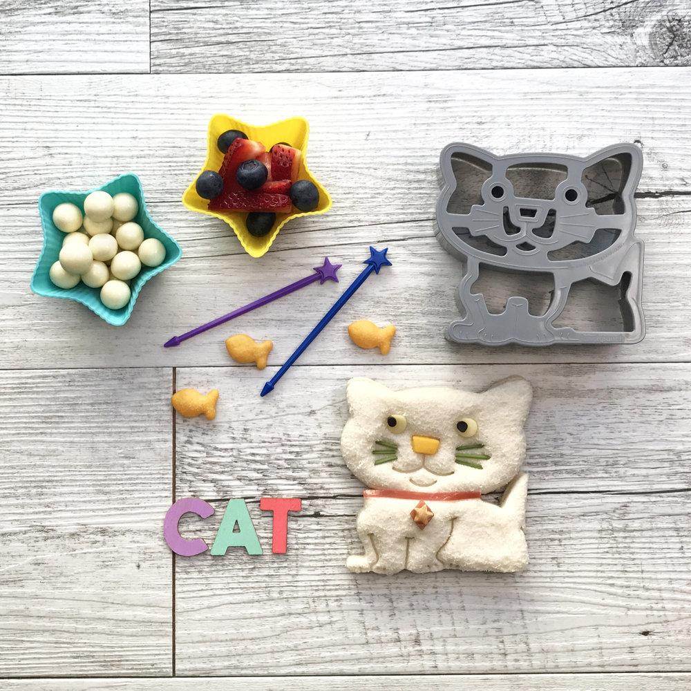 Cat Lifestyle - Square.jpg