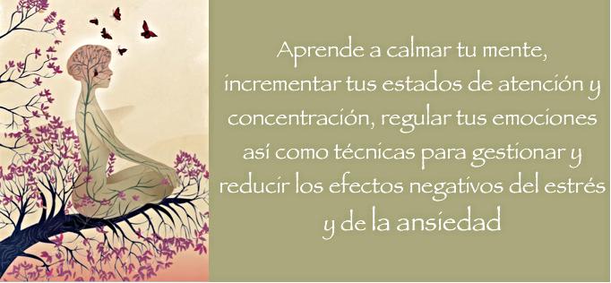 Curso de Mindfulness 8 Semanas - MADRID - SUKHA Mindfulness