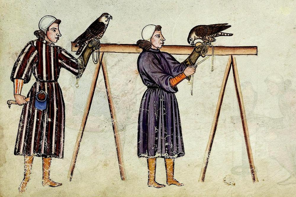Vedeli ste? - Výcviku dravcov bola venovaná obrovská pozornosť a prvá ucelená príručka sokoliarstva vznikla už v stredoveku. Je ňou príručka Fridricha II Štaufského - nemeckého cisára, príznačne nazvaná De arte venandi cum avibus – O umení lovu s vtákmi.Ak si nájdete chvíľku času, prelistujte si ju. Je doplnená nádhernými ilustráciami. Nič vás lepšie nevtiahne do atmosféry lovu, s týmito krásnymi predátormi.