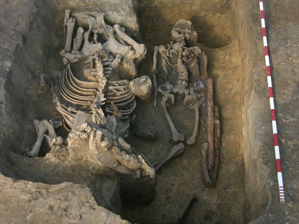 Vedeli ste? - Maďarský bojovník bol so svojim koňom naozaj nerozlučnou dvojicou. Toto prepojenie platilo až za hrob, respektíve do hrobu. Jazdci totiž bývali pochovávaní spolu s koňmi. Súčasťou takzvanej hrobovej výbavy bol aj kompletný jazdecký postroj. Kôň tak svojho pána sprevádzal aj po smrti.