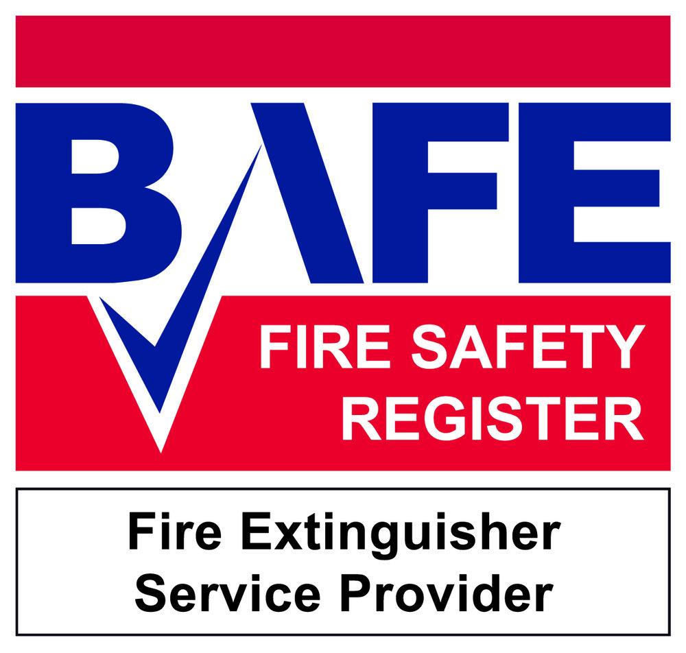 BAFE-SP101-Logo-JPG-CMYK.jpg