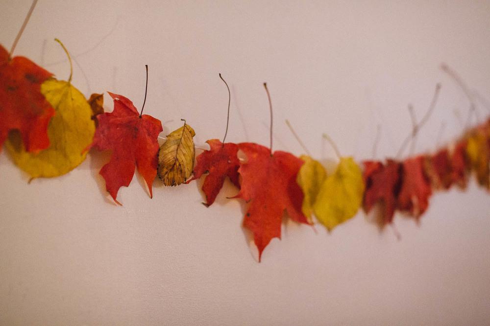 fall-5.jpg