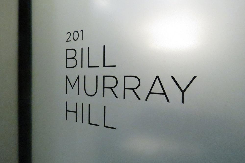 bill-murray-hill.jpg