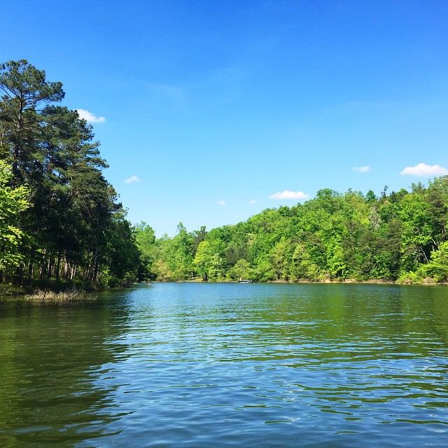 There's nothing like spending Saturday afternoons at #SmithLake. Enjoying the view into one of our two sloughs at #LakesideAlabama on this amazing day. #lakelife #cullman #liveoutside