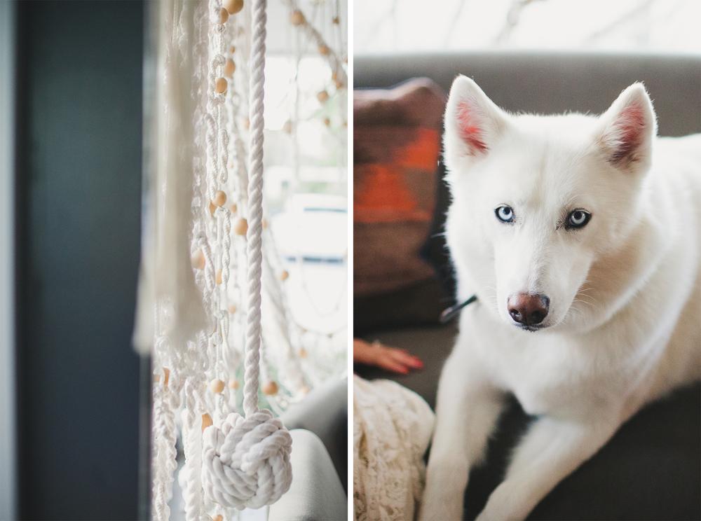 2updog.jpg