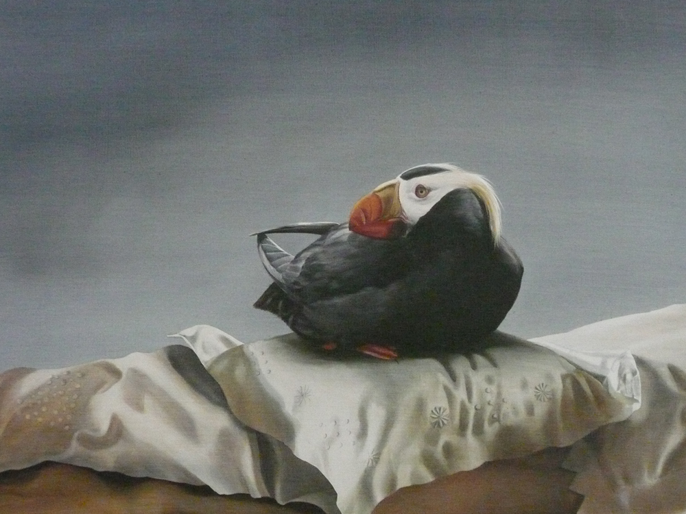 Puffin on Pillow SOLD acrylic on panel 17 x 26
