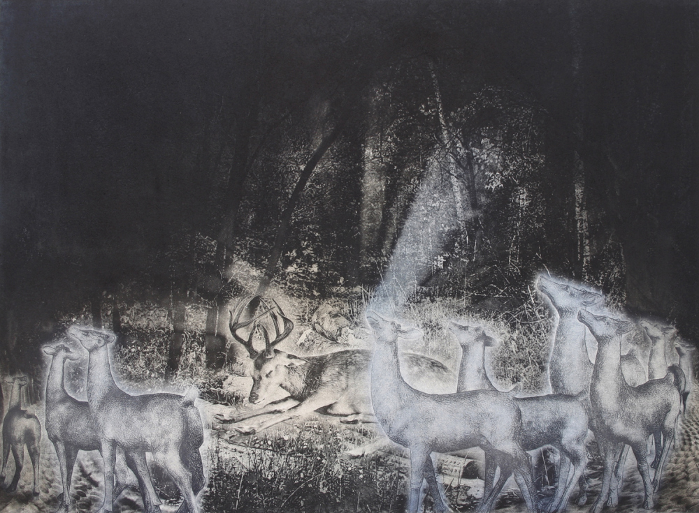 Procession $1,225 photogravure 24 x 28