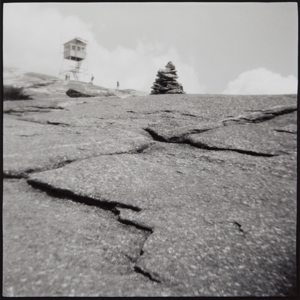 Land Marks $385  selenium toned gelatin silver print from toy camera negative 17 x 16