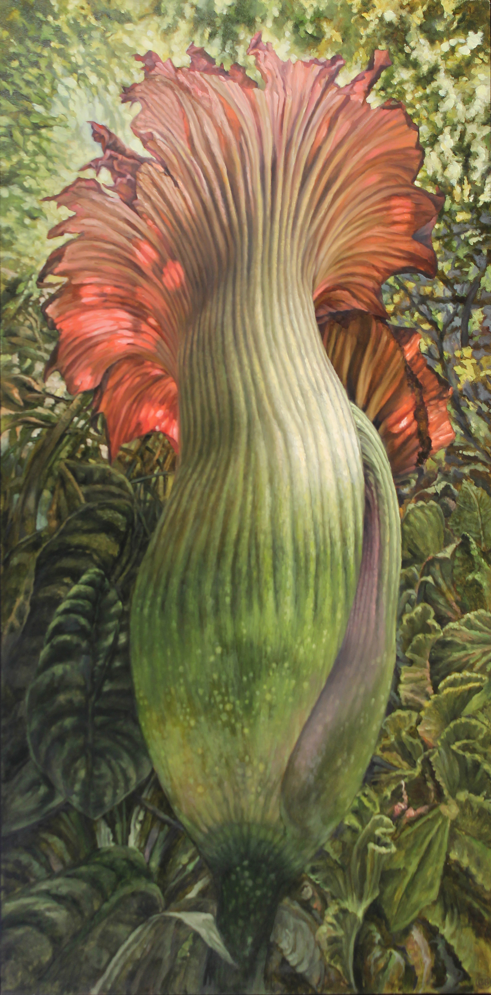 Green Corpse Flower $4,200  oil on panel 48 x 24