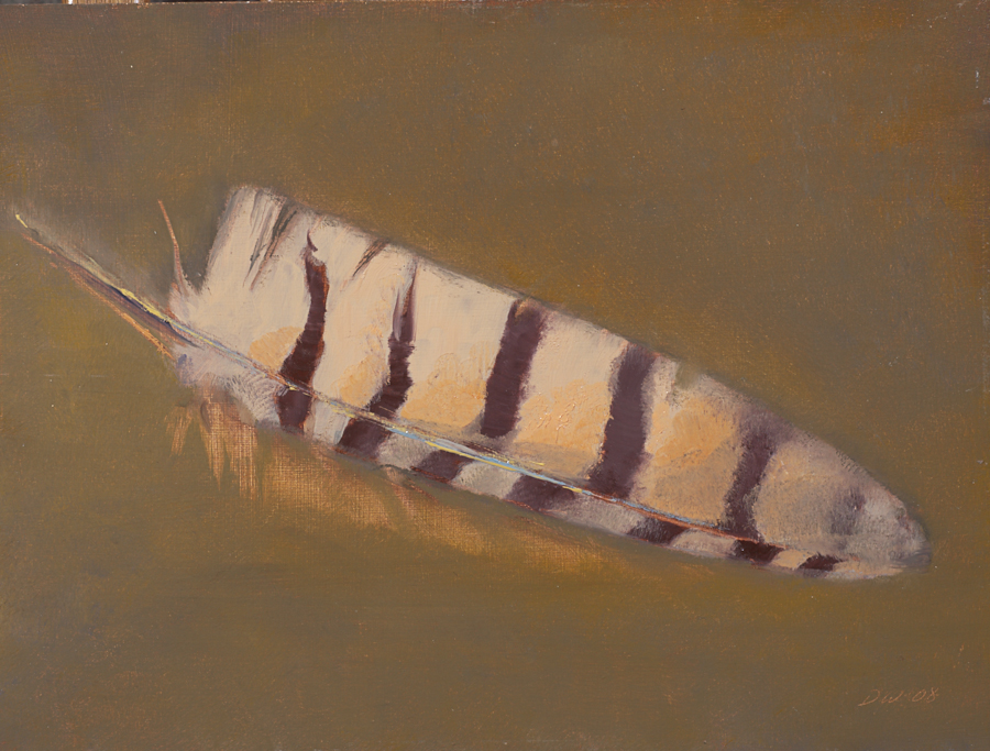Diane Washa - Feather Study 2008