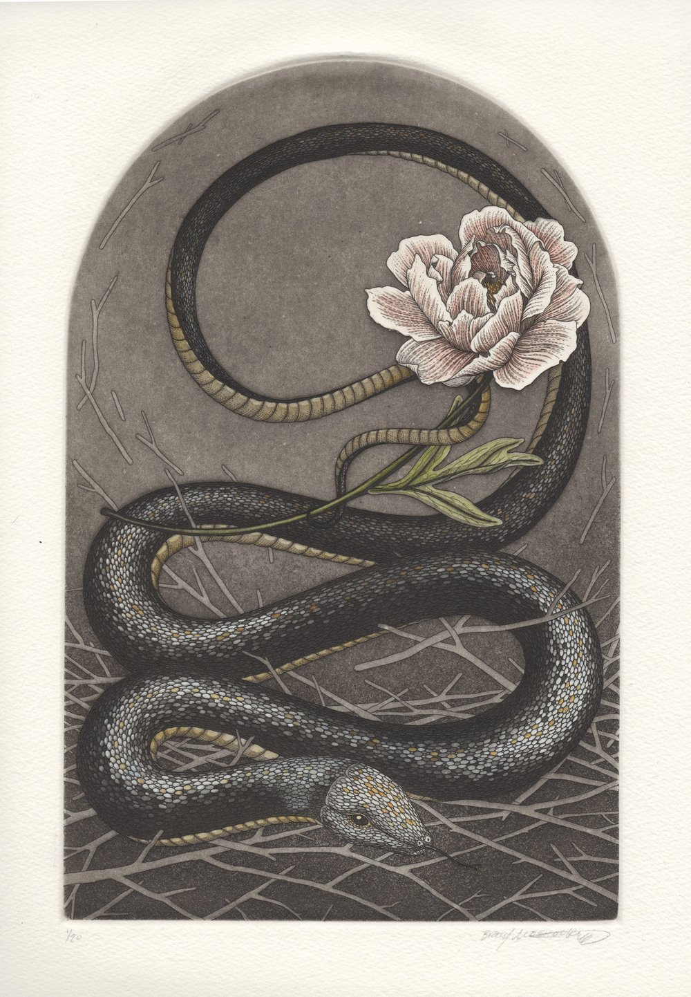 Spirit Animal Alter II: Black Snake