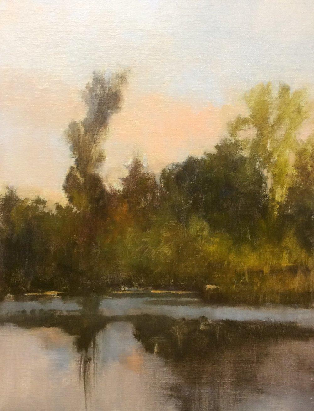 Diane Washa - Autumn Sunset on Lake Leota