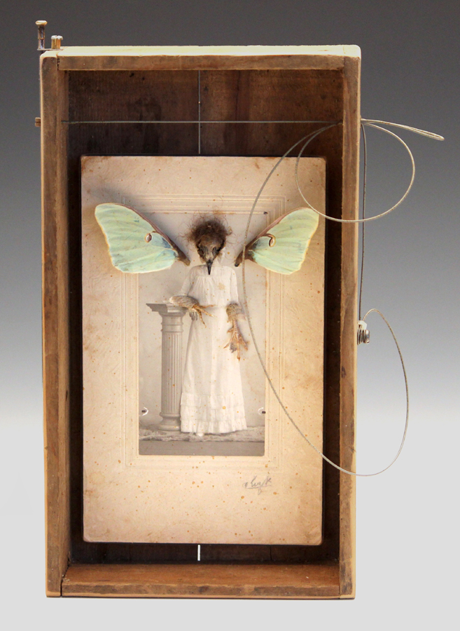 crestfallen   wood, vintage photo of bridesmaid, pheasant chick feet, bird skull, hair of the artist, luna moth fore-wings, guitar string, bicycle spoke, fabric, beeswax  13 x 9 x 4  $500