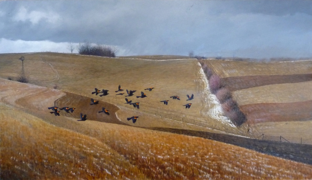 Jonathan Wilde - Male Redwings Coming North