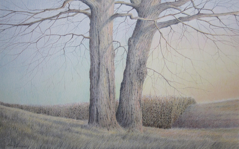 Q uiet Season Colored Pencil on Paper  23.75 x 33.5 (17.75 x 27.5) $1,700