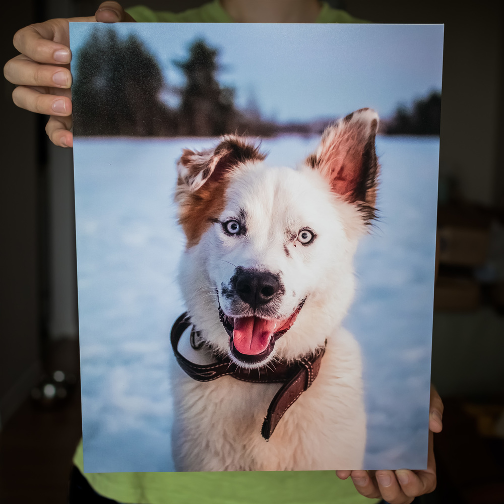 Max's parents purchased several of these beautiful  mounted prints  for their home.
