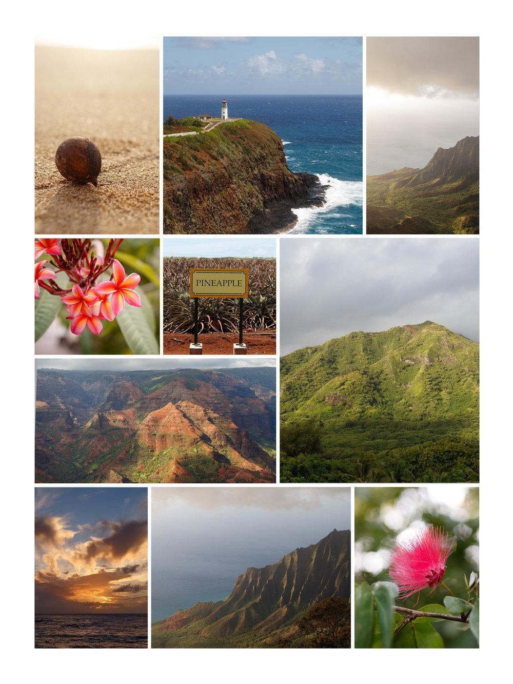 Kapaa_Kauai_Hawaii.jpg