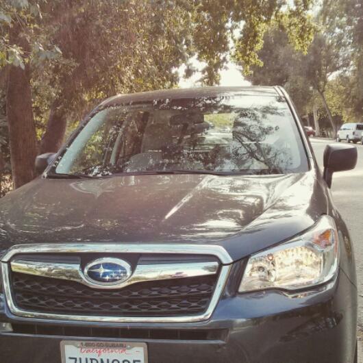 Subaru! Thanks for letting me borrow your sweet wheels, U&B!