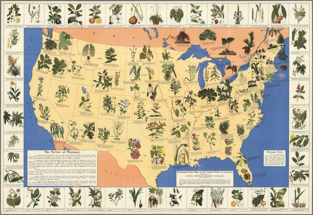 Mapping_A Depression-Era Medicinal Plant Map of the United States.jpg