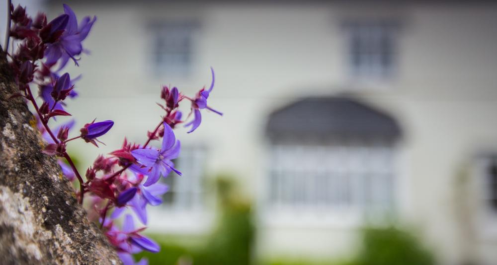 strete barton guest house 1