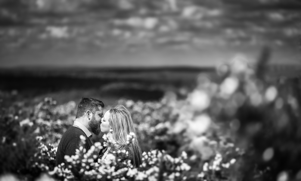 Ashdown-Forest-Pooh-Corner-Sussex-Engagement-Photography-6
