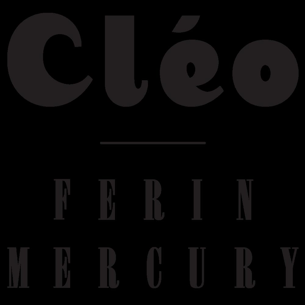 Faq cleo ferin mercury designer silk scarves biocorpaavc