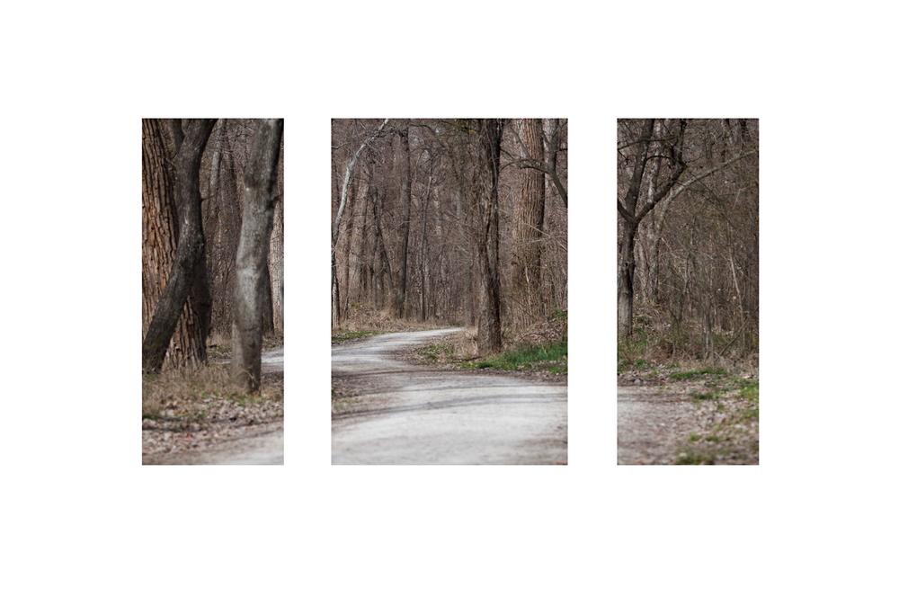 greenbeltp triptych sharpweb.jpg