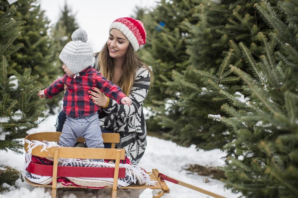 Tozer Christmas038.jpg