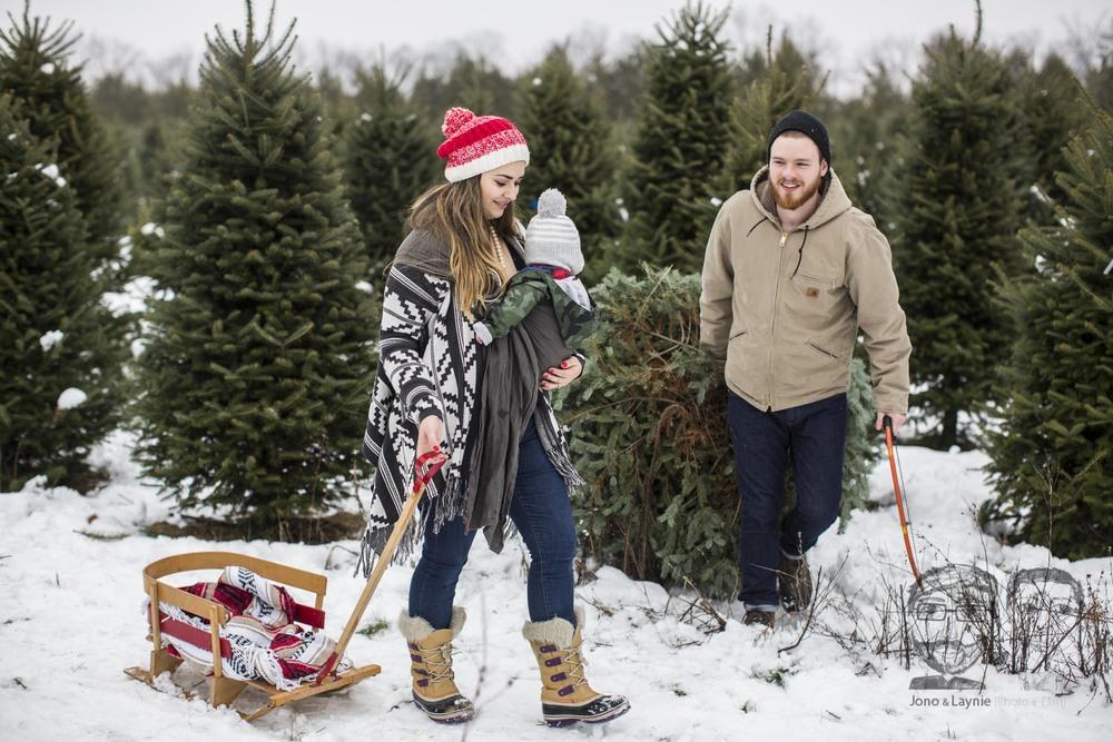 Tozer Christmas061.jpg