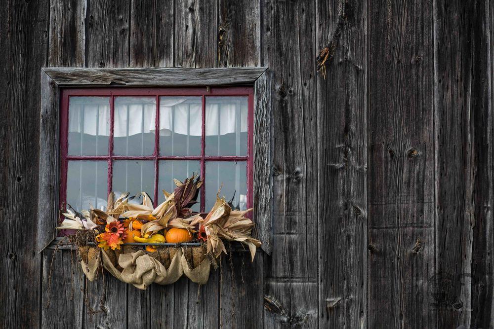003Brantwood Farms-Brantford Photographers-Jono & Laynie Co.jpg