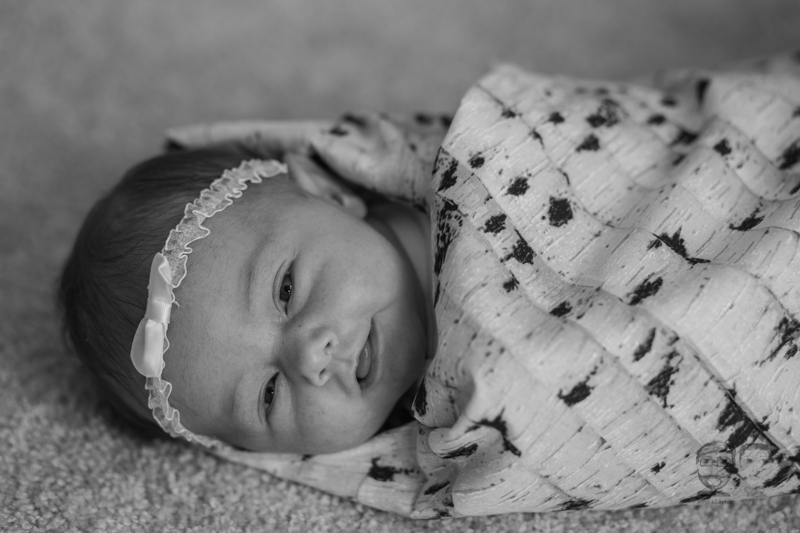 Newborn Lifestyle-Toronto Photographers-Jono & Laynie Co094.jpg