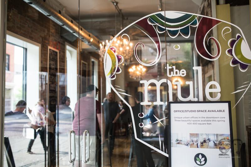 The Mule, Hamilton-Lifestyle Photographers-Jono & Laynie Co029.jpg