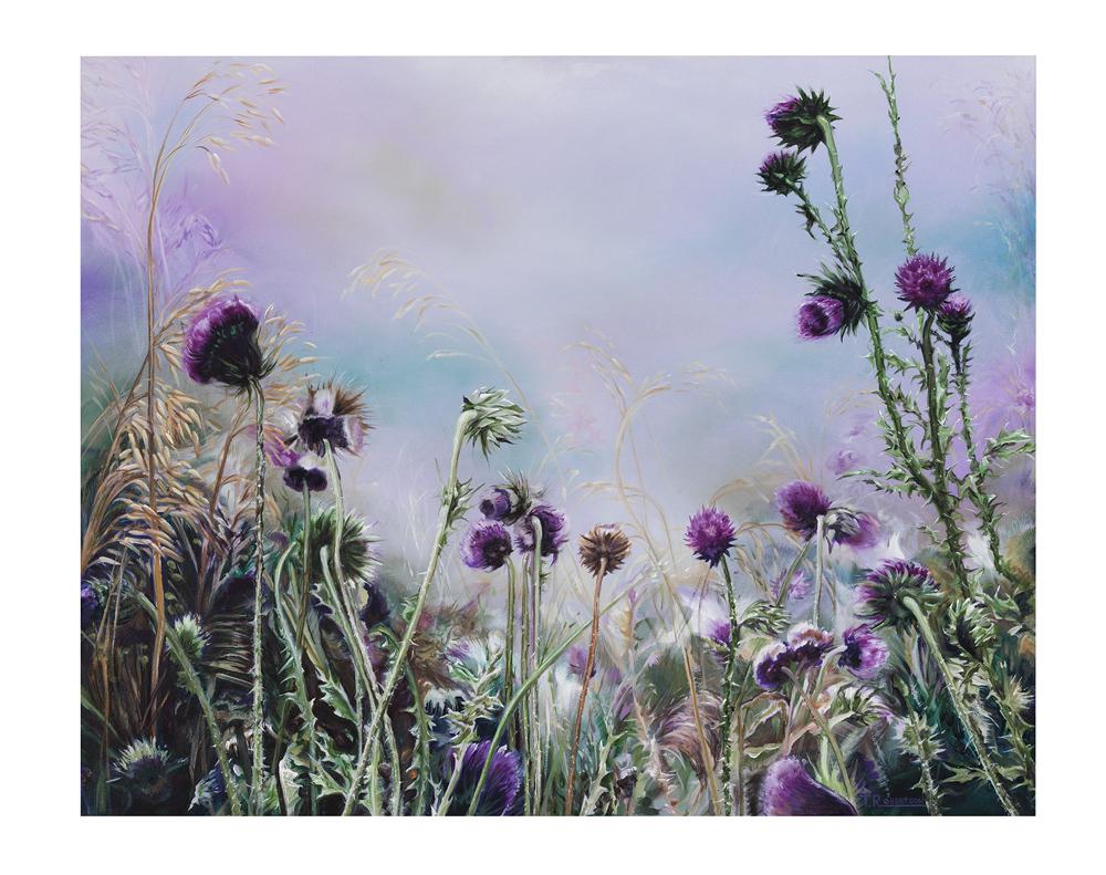 Misty Morn: Tom Robertson
