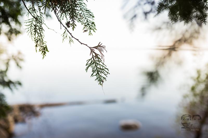 St. Joes Island-Toronto Photographer-Jono&Laynie28.jpg
