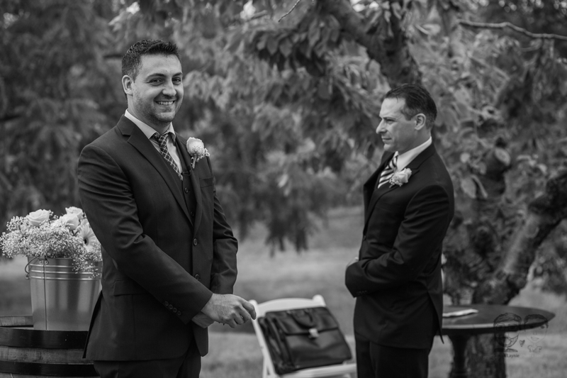Peninsual Ridge Estates Wedding-Niagara Photographers-Jono&Laynie13.jpg