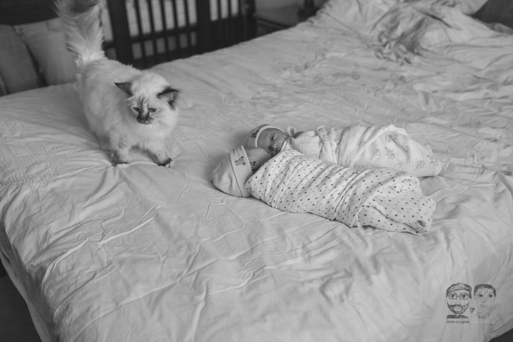Brantford Newborn Lifestyle Photography-Jono&Laynie27.jpg