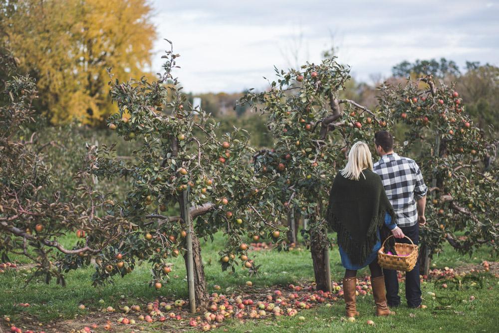 Myers Apple Farm Engagement Session073.jpg