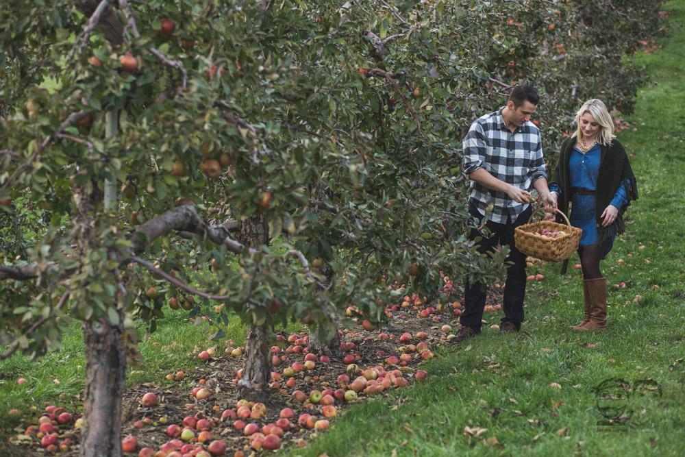 Myers Apple Farm Engagement Session106.jpg