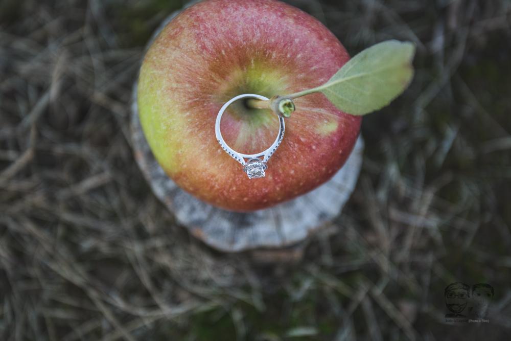 Myers Apple Farm Engagement Session315.jpg