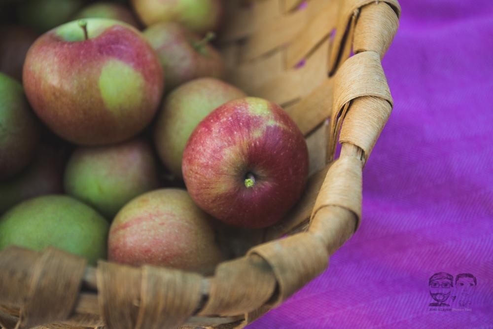 Myers Apple Farm Engagement Session318.jpg