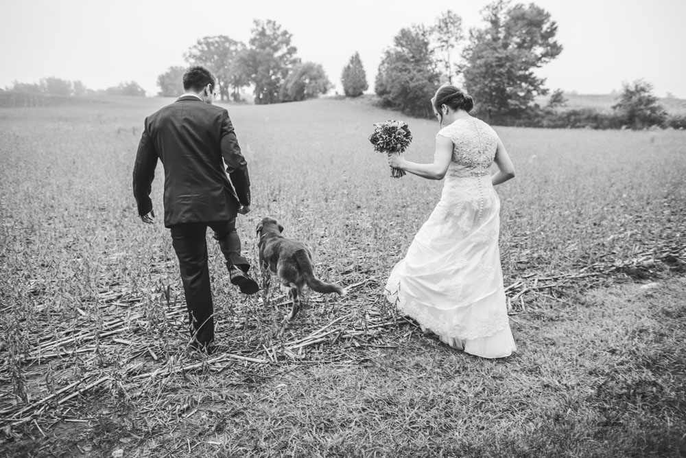 Brantford Wedding Photographer-Jono & Laynie063.jpg