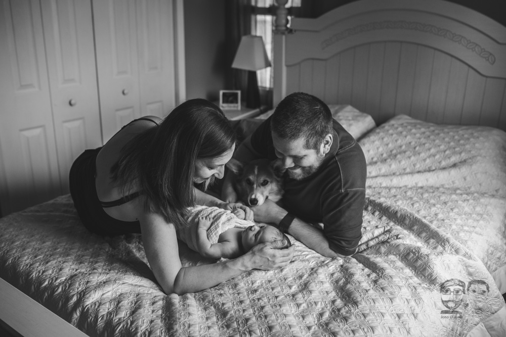Brantford Newborn Lifestyle Photographer348.jpg