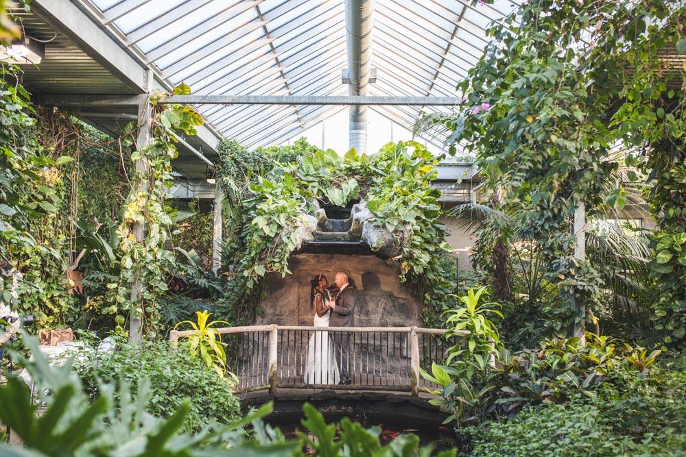 Butterfly Conservatory-JonoLaynie30.jpg
